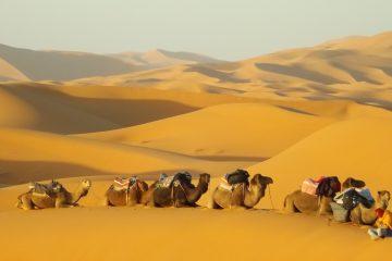 deserto-del-sarah